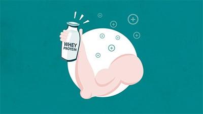 Proteína do Soro do Leite  – Whey Protein